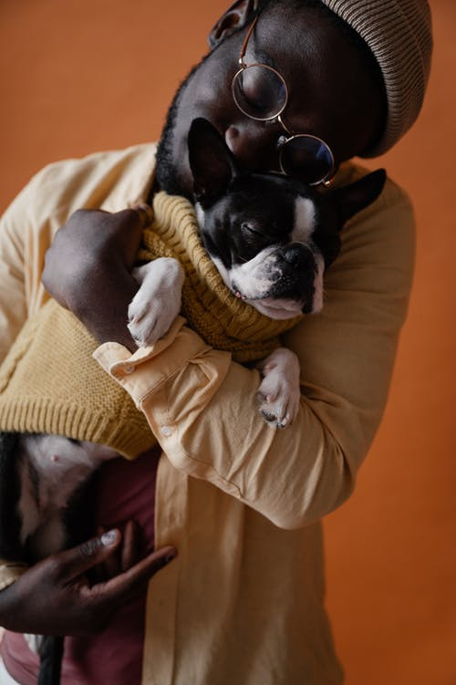 African American male owner in casual outfit embracing adorable Boston terrier with closed eyes against orange background