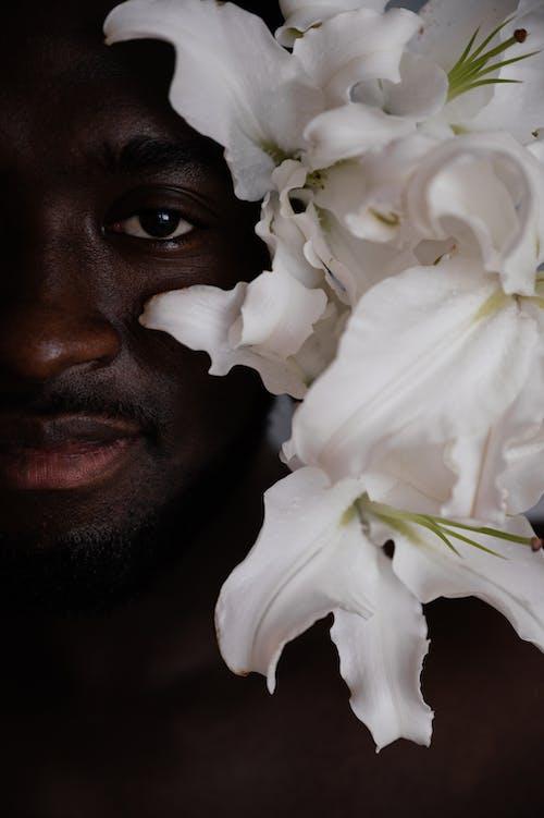 アフリカ系アメリカ人, インドア, エレガントの無料の写真素材