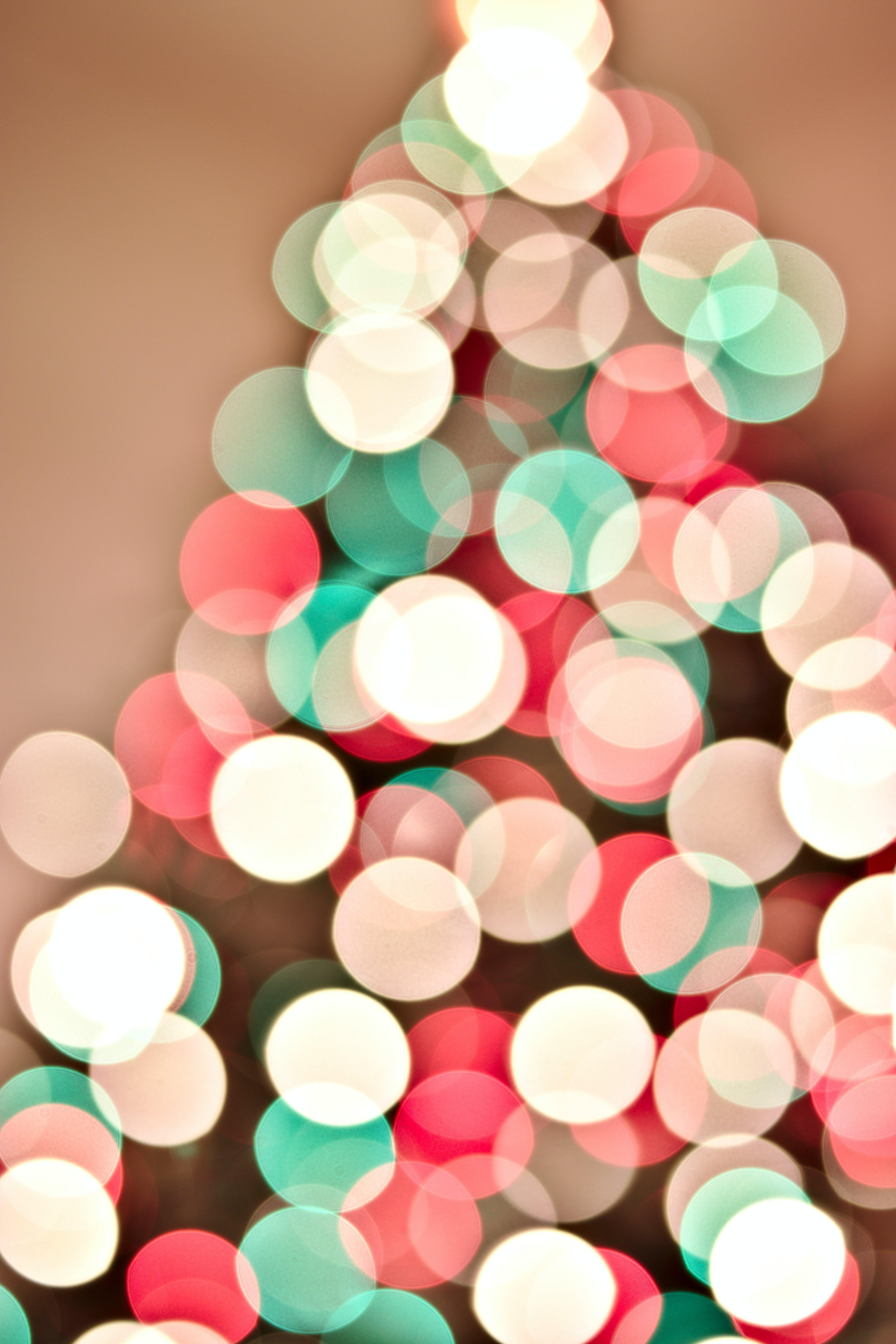 Foto d'estoc gratuïta de arbre de Nadal, llums, llums de Nadal, nadal