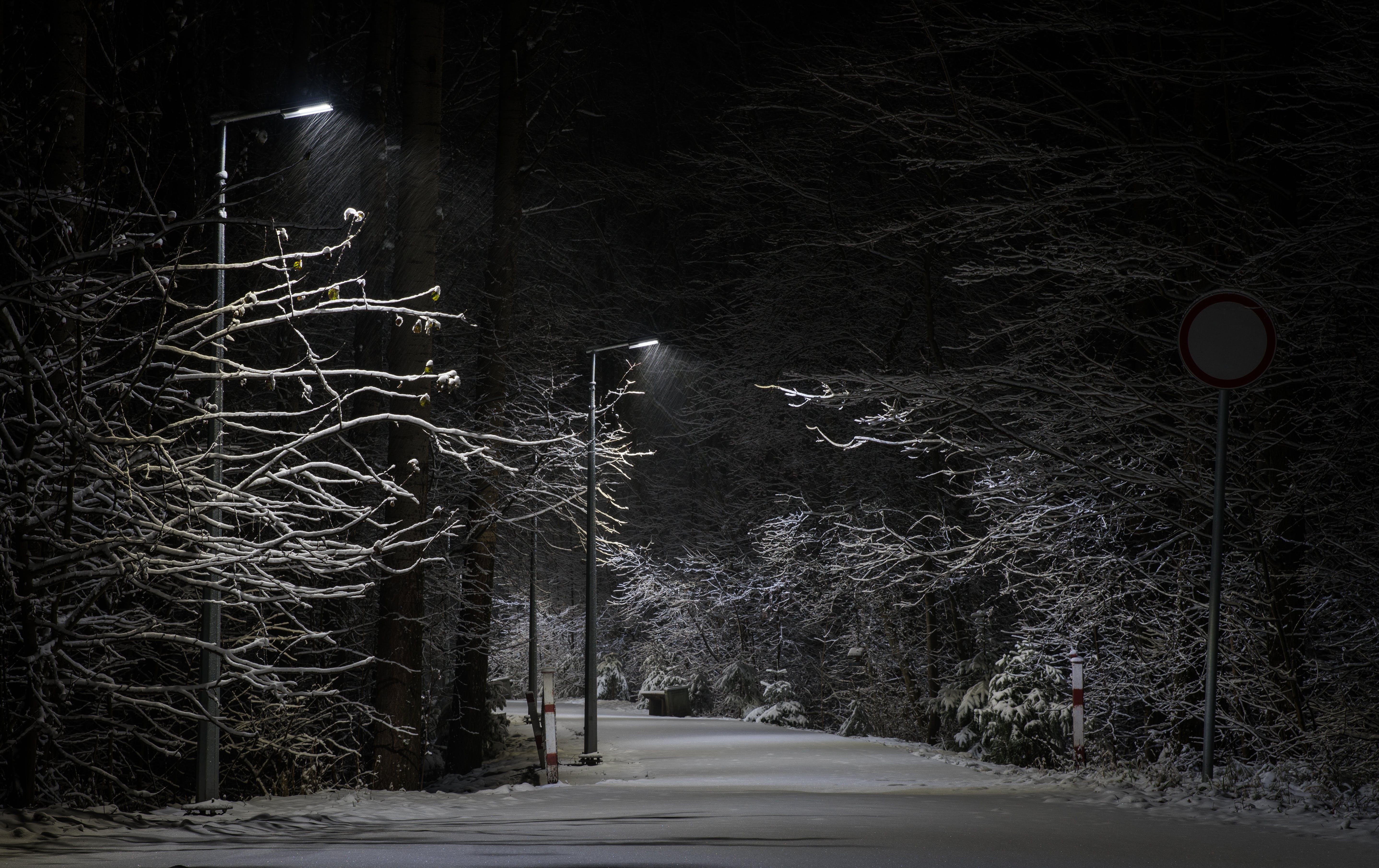 Free stock photo of snow, landscape, winter landscape