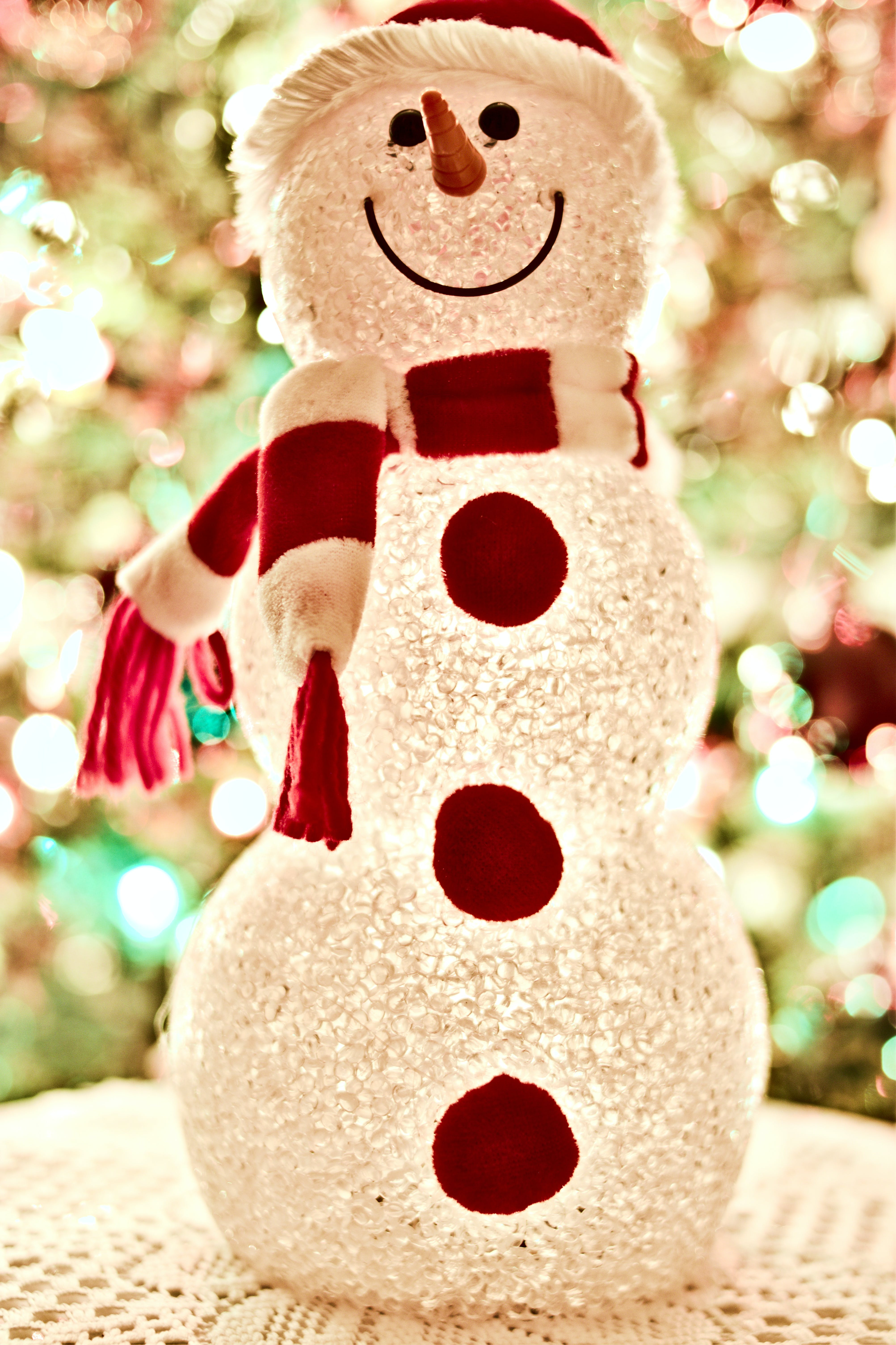 Foto d'estoc gratuïta de arbre, art, brillant, bufanda