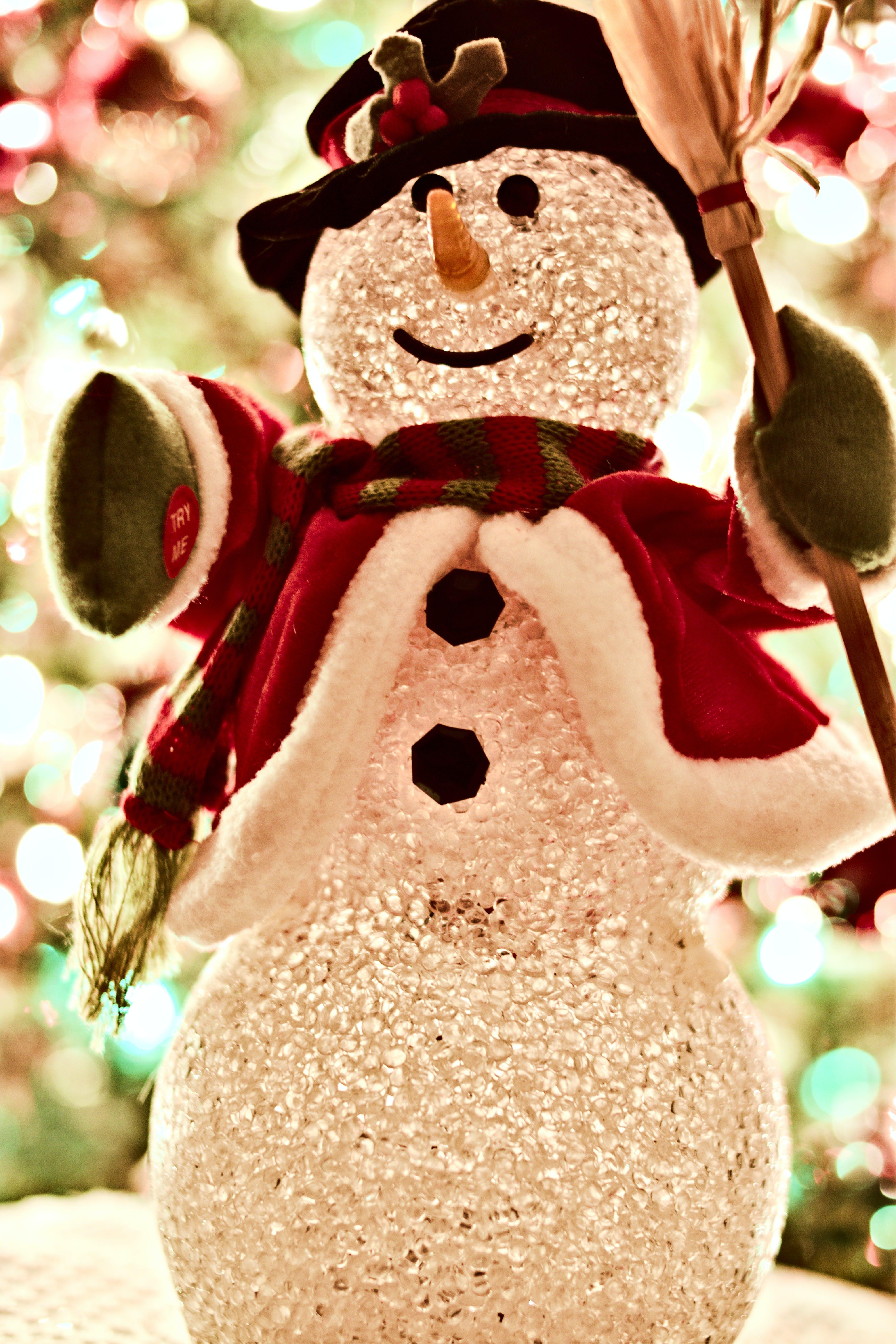 Foto d'estoc gratuïta de arbre, arbre de Nadal, bon nadal, brillant