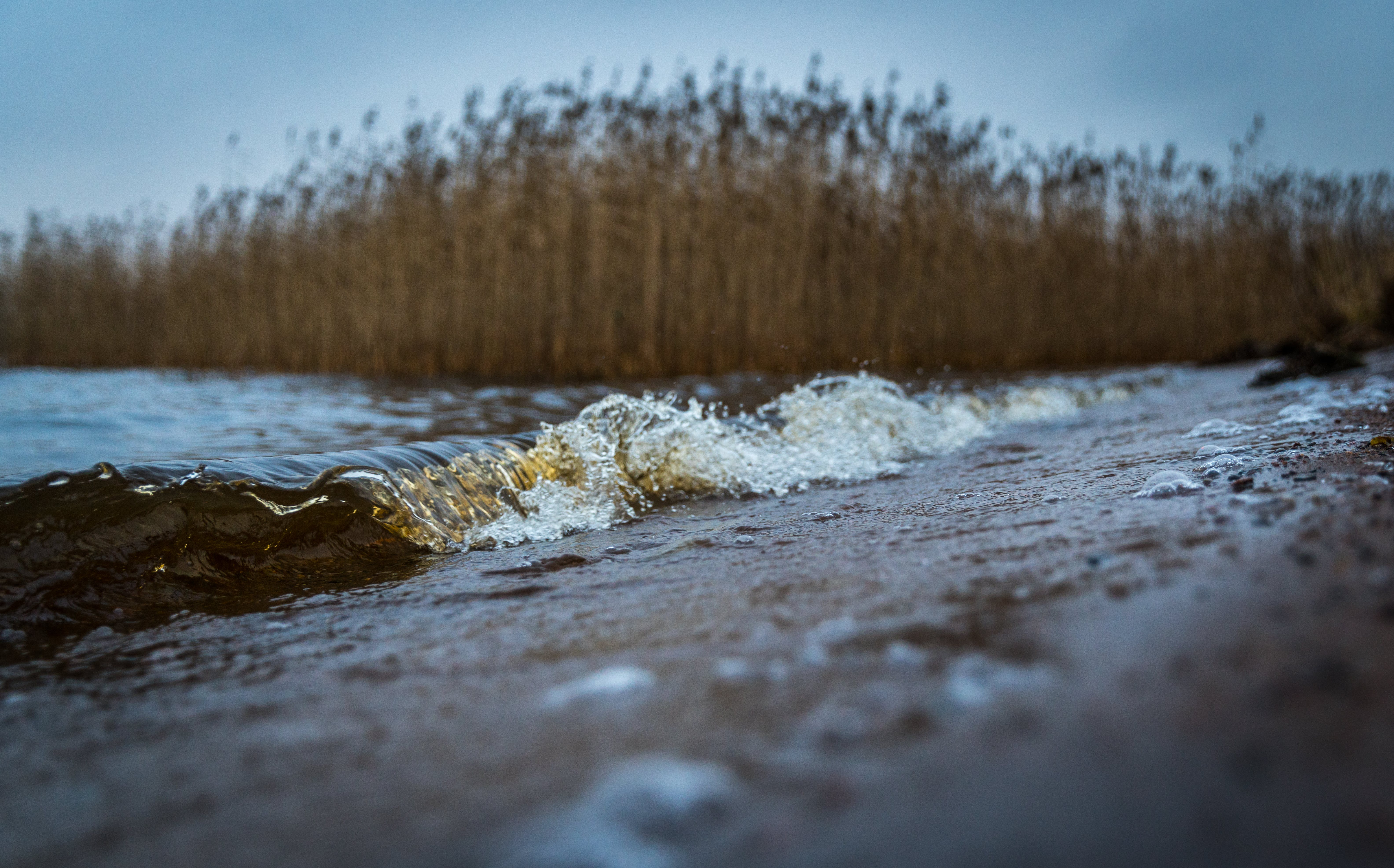 Selective Focus Photography of Sand Near Body of Water