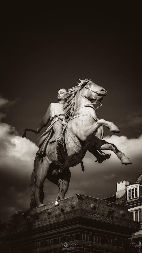 Foto d'estoc gratuïta de arquitectura, art, blanc i negre, cavalleria