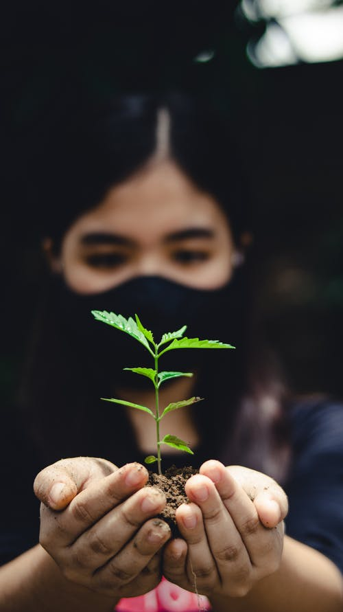 Close-Up Shot of a Woman Holding a Plant
