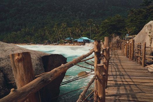 Brown Wooden Footbridge Beside Body Of Water