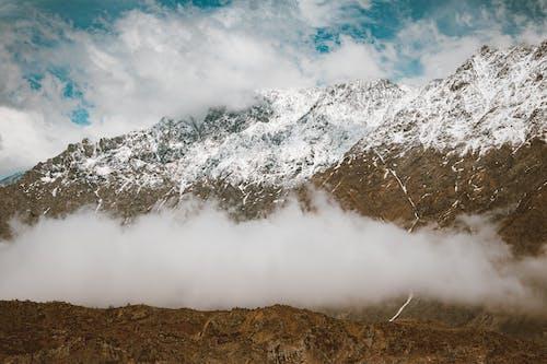 冬季, 大雪覆蓋, 天性 的 免費圖庫相片