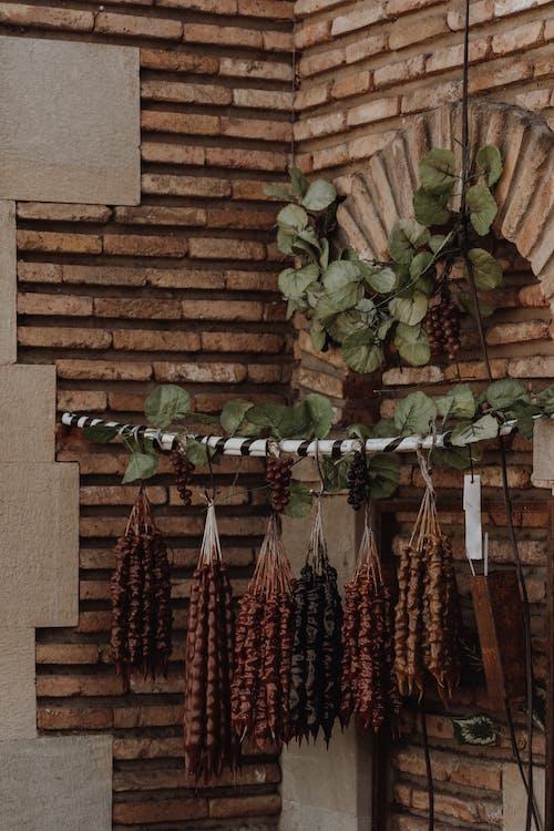 Kostenloses Stock Foto zu braun, getrocknete blätter, hängen