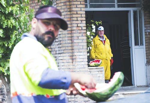Free stock photo of fruit, human, iran