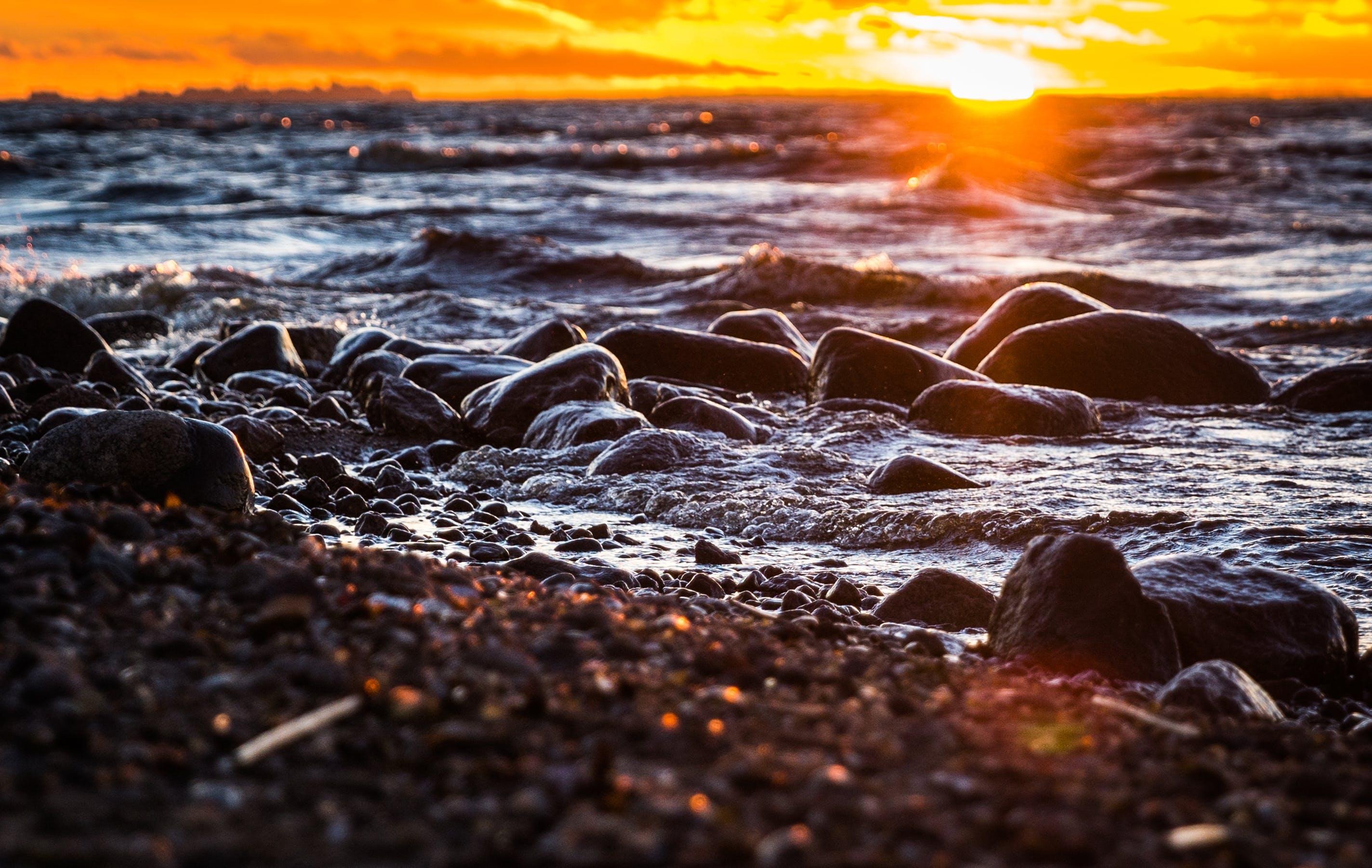 Foto profissional grátis de água, alvorecer, beira-mar, costa