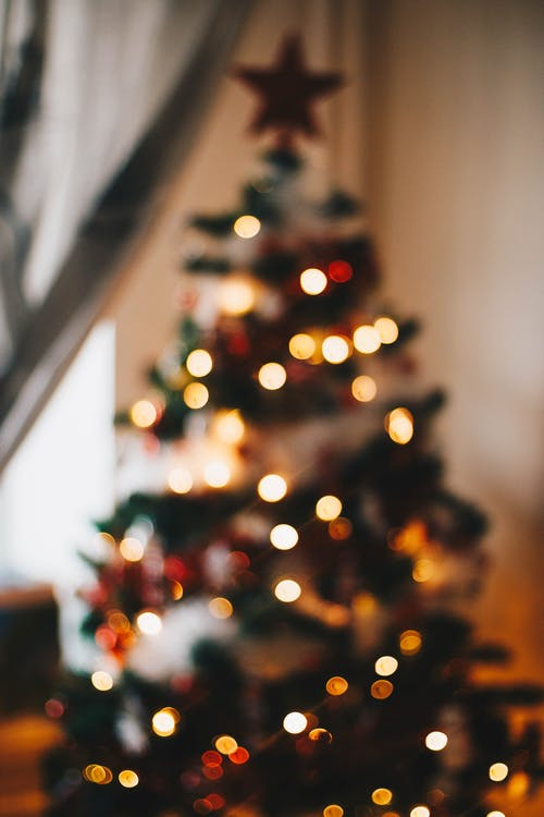 Christmas Pic.Christmas Images Pexels Free Stock Photos