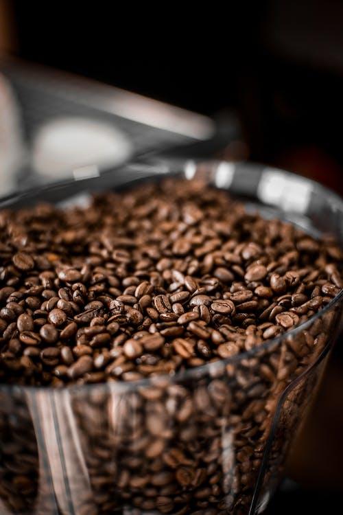 Coffee beans in deep plastic cup of grinder