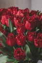 Artificial Red Tulips