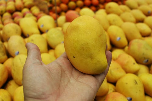 Yellow Citrus Fruit on Persons Palm