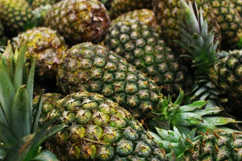 Green and Yellow Pineapple Fruits