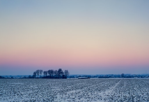Free stock photo of cold, snow, dawn, landscape