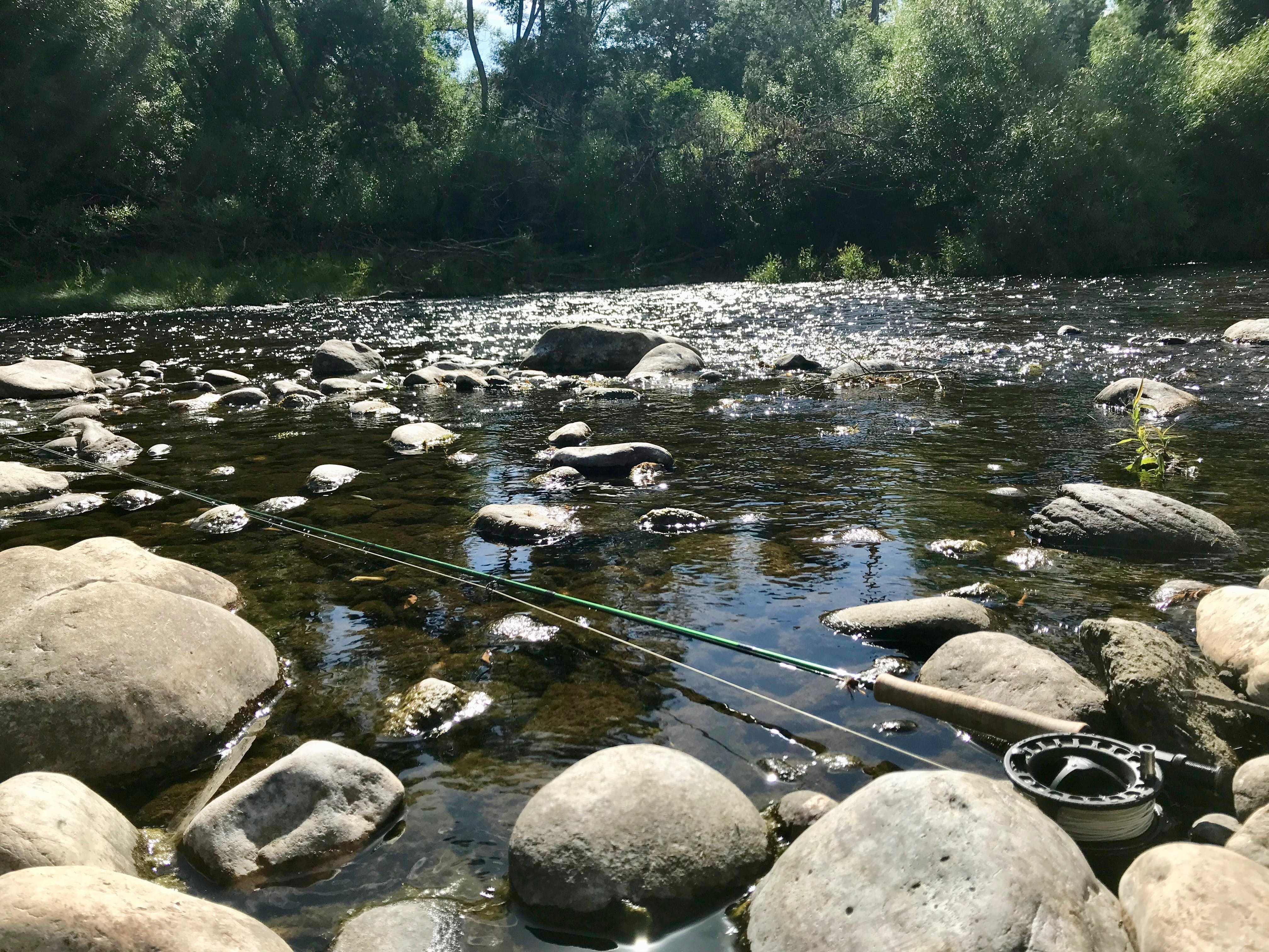 Free stock photo of fly fishing, Mersey River