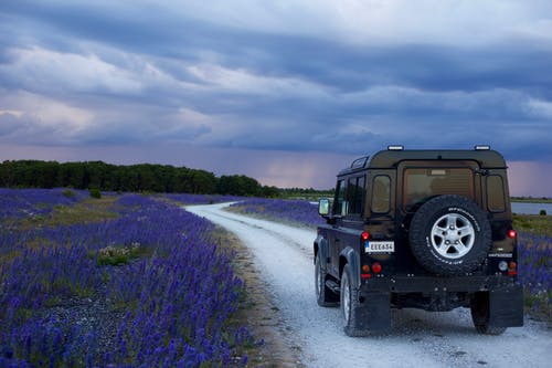 Immagine gratuita di all'aperto, ambiente, auto, automobile