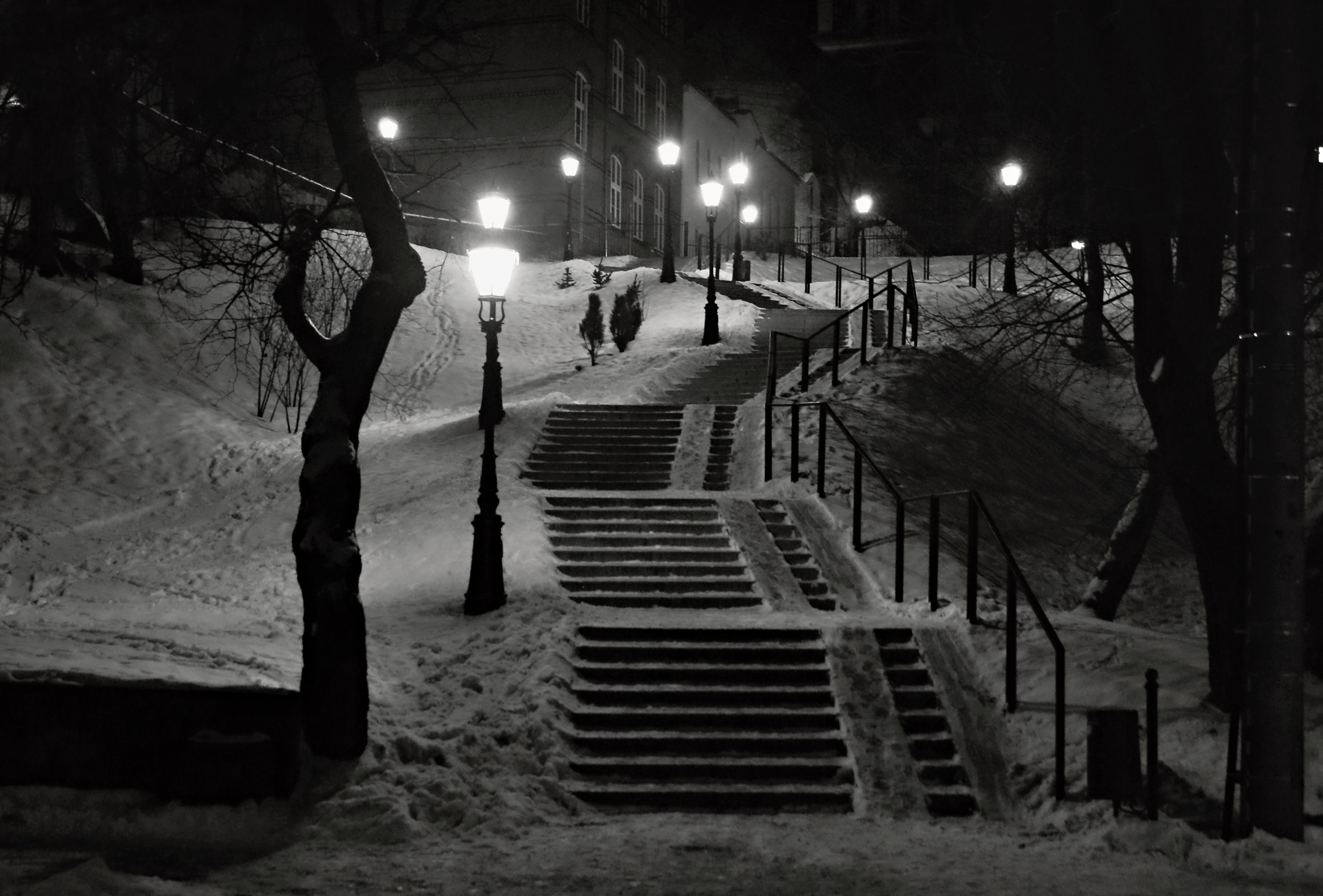 Free stock photo of black and-white, lights, night, snow