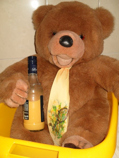Kostenloses Stock Foto zu teddy