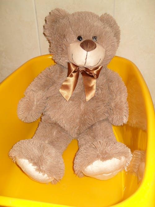 Kostenloses Stock Foto zu teddy, wanne