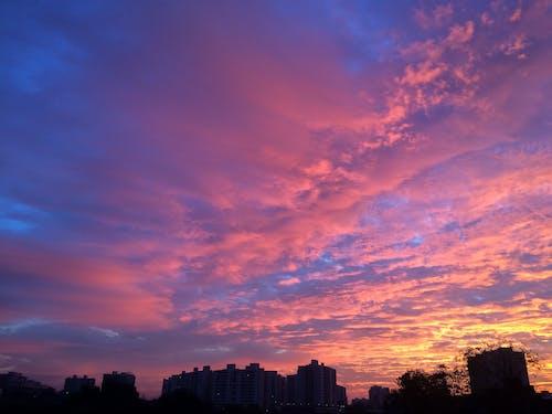 Δωρεάν στοκ φωτογραφιών με Ανατολή ηλίου, κίτρινη, μοβ, ορίζοντας