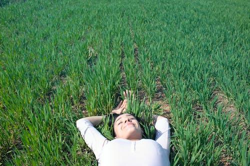 Бесплатное стоковое фото с белый, газон, девочка, девушка