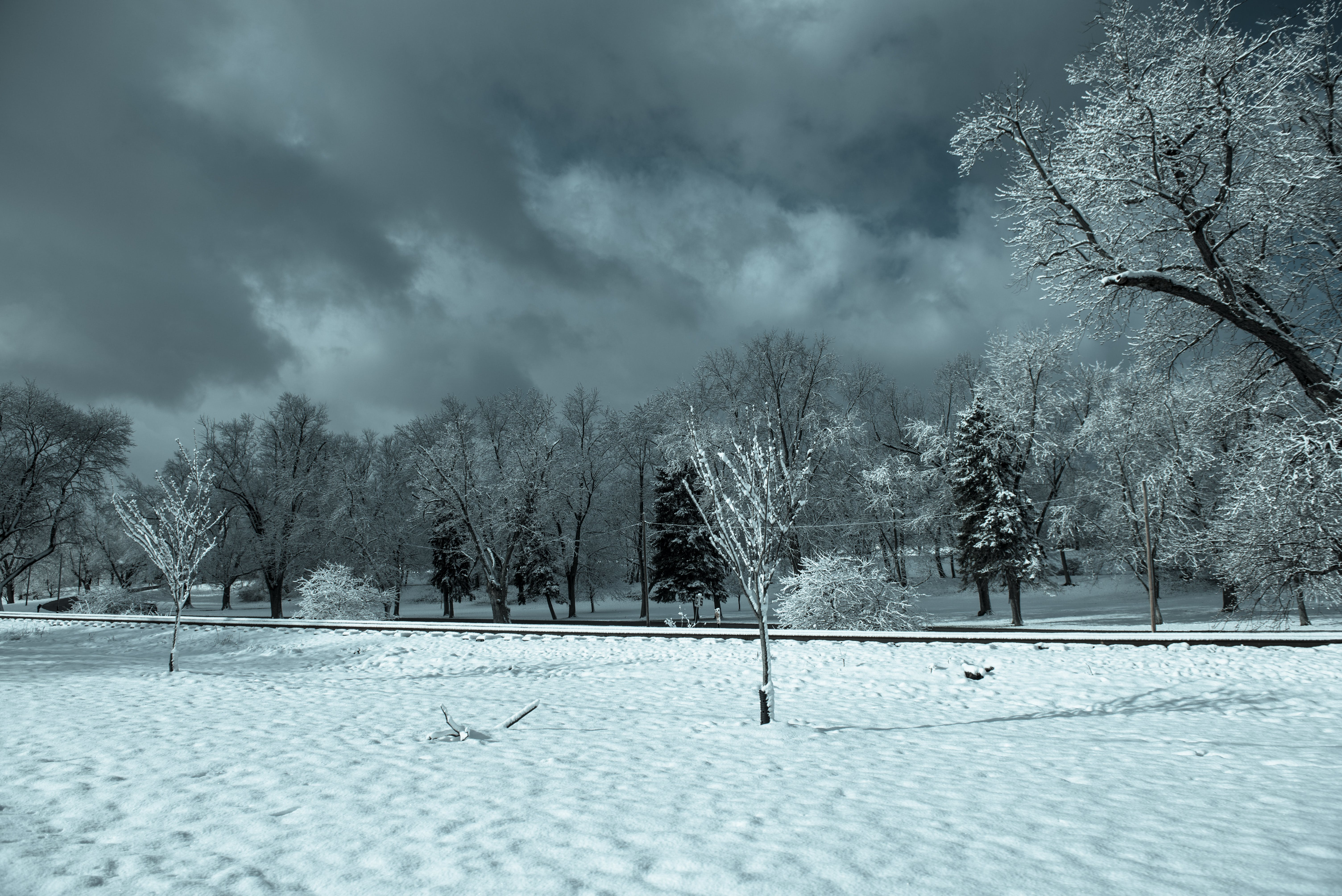 Free stock photo of cold, snow, winter