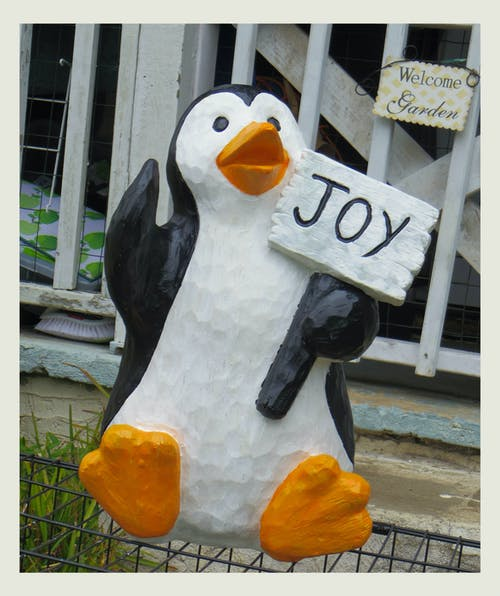 Free stock photo of holiday, joy, penguin, yard decorations