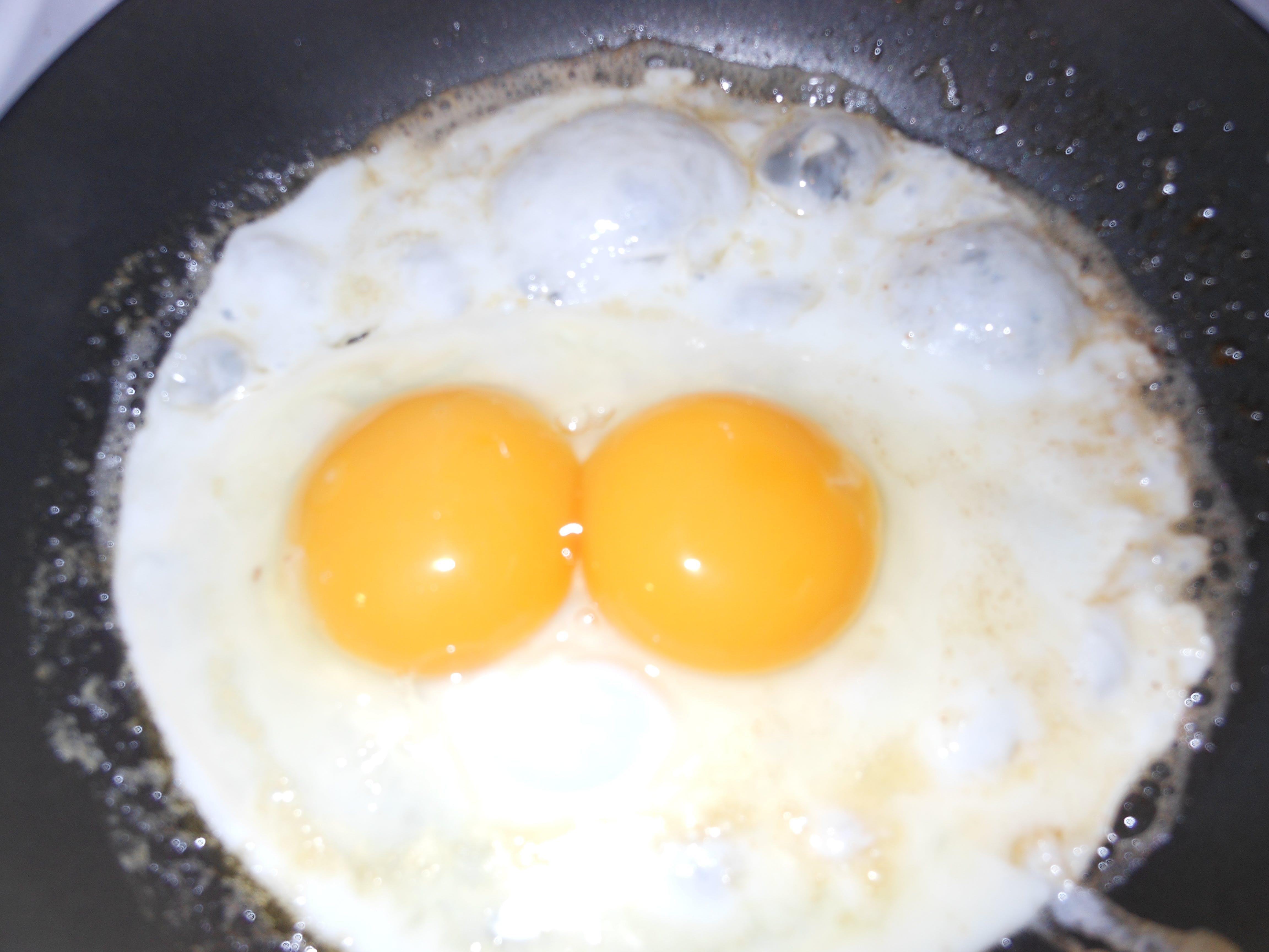 Free stock photo of Double-yolk egg, egg, Sunny side up egg
