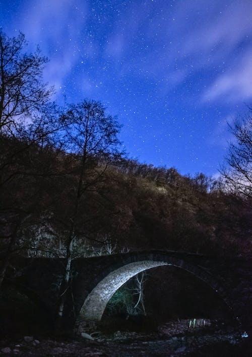 คลังภาพถ่ายฟรี ของ กลางแจ้ง, การท่องเที่ยว, ดวงดาว, ดาวเต็มฟ้า