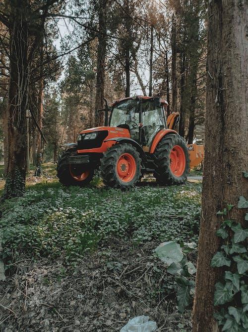 Ilmainen kuvapankkikuva tunnisteilla metsä, raskas kalusto, traktori