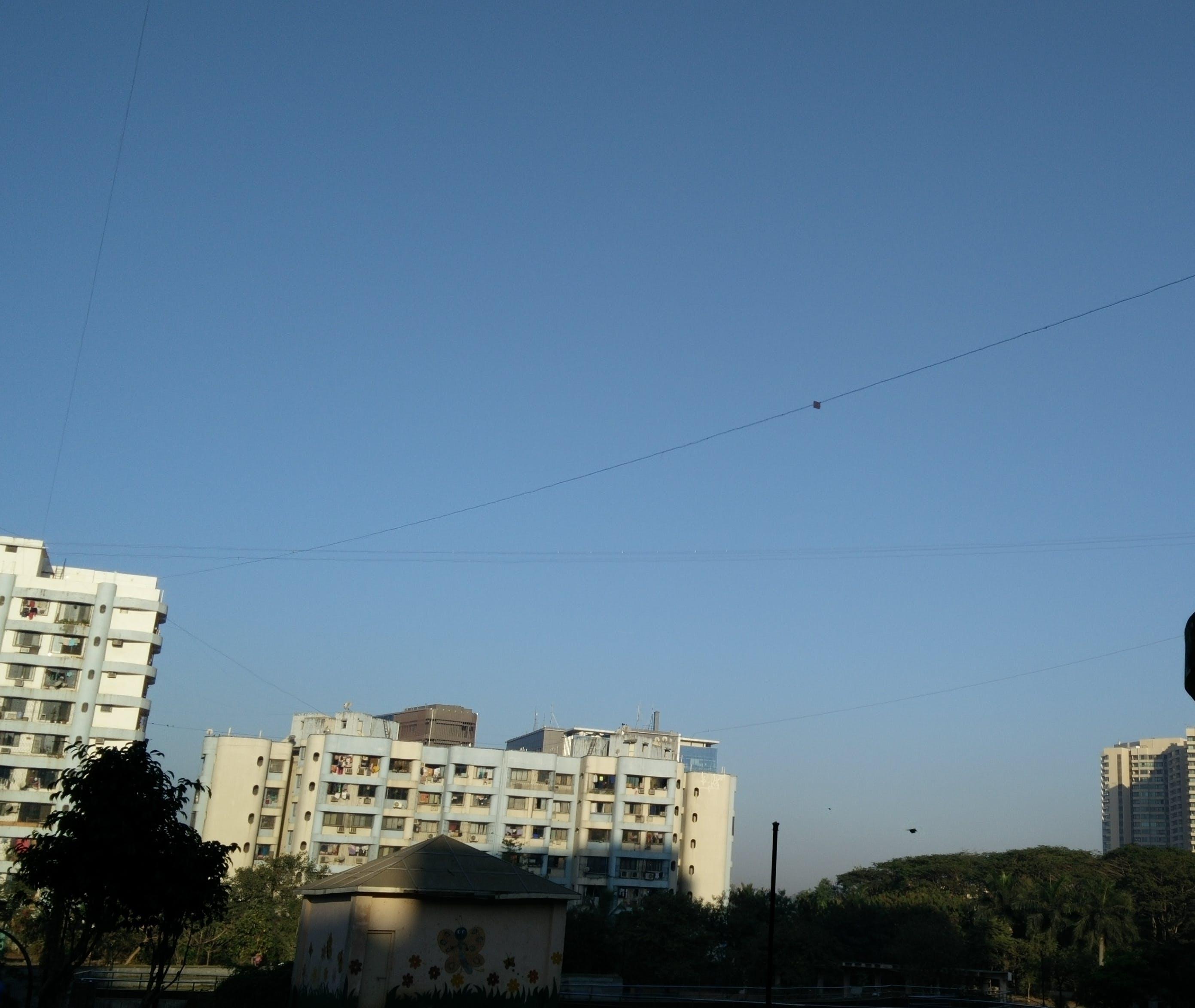 Free stock photo of sky, blue sky, kite, 365 photos