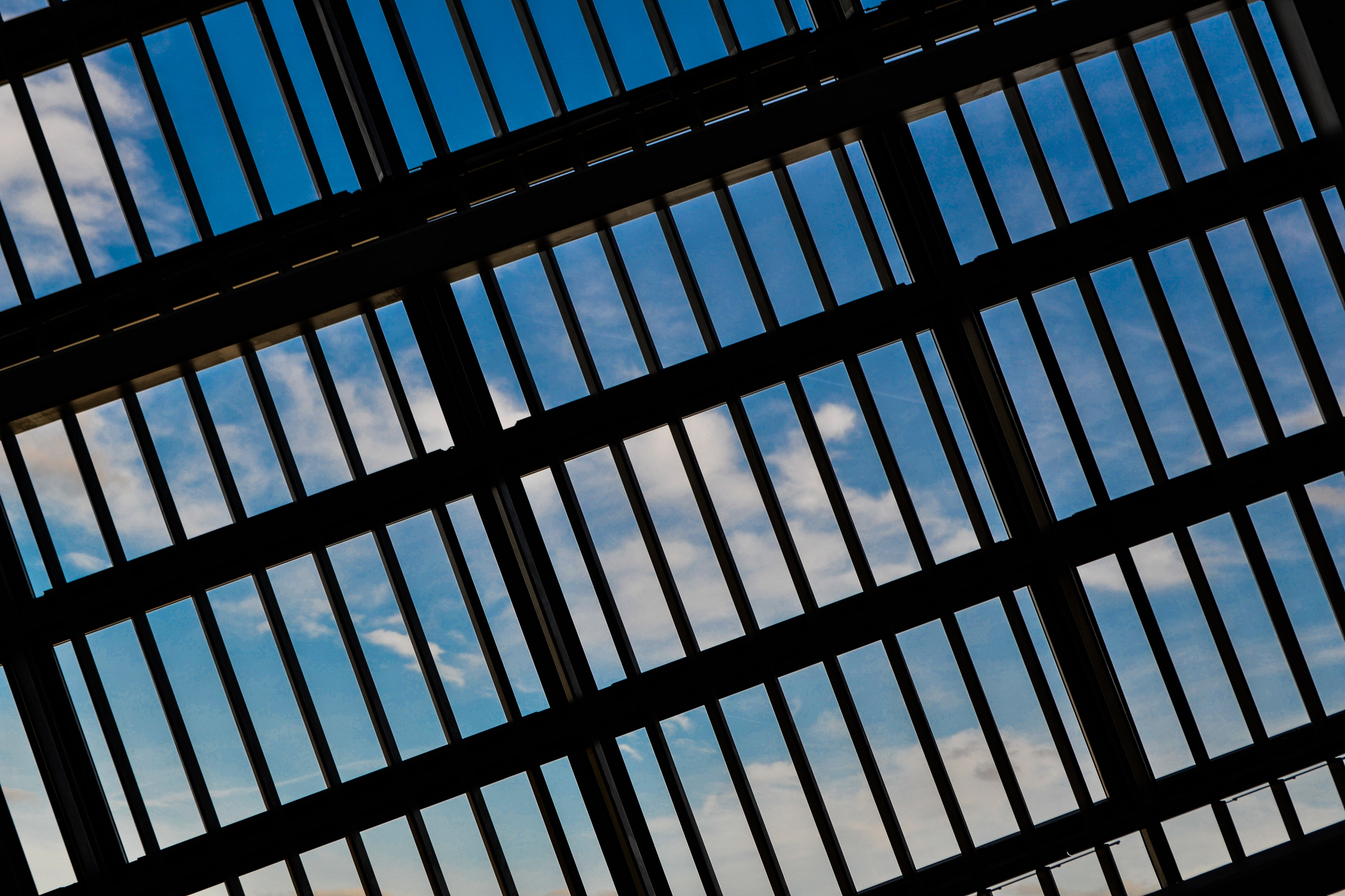Black Steel Cage