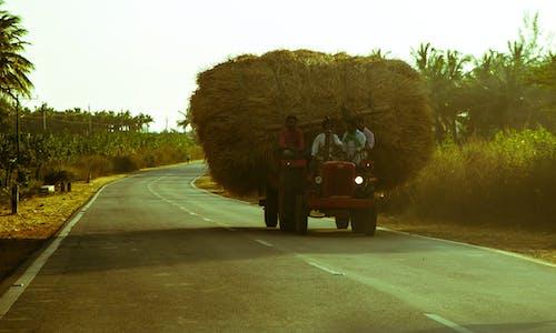Fotos de stock gratuitas de autopista, India, indio, pueblo