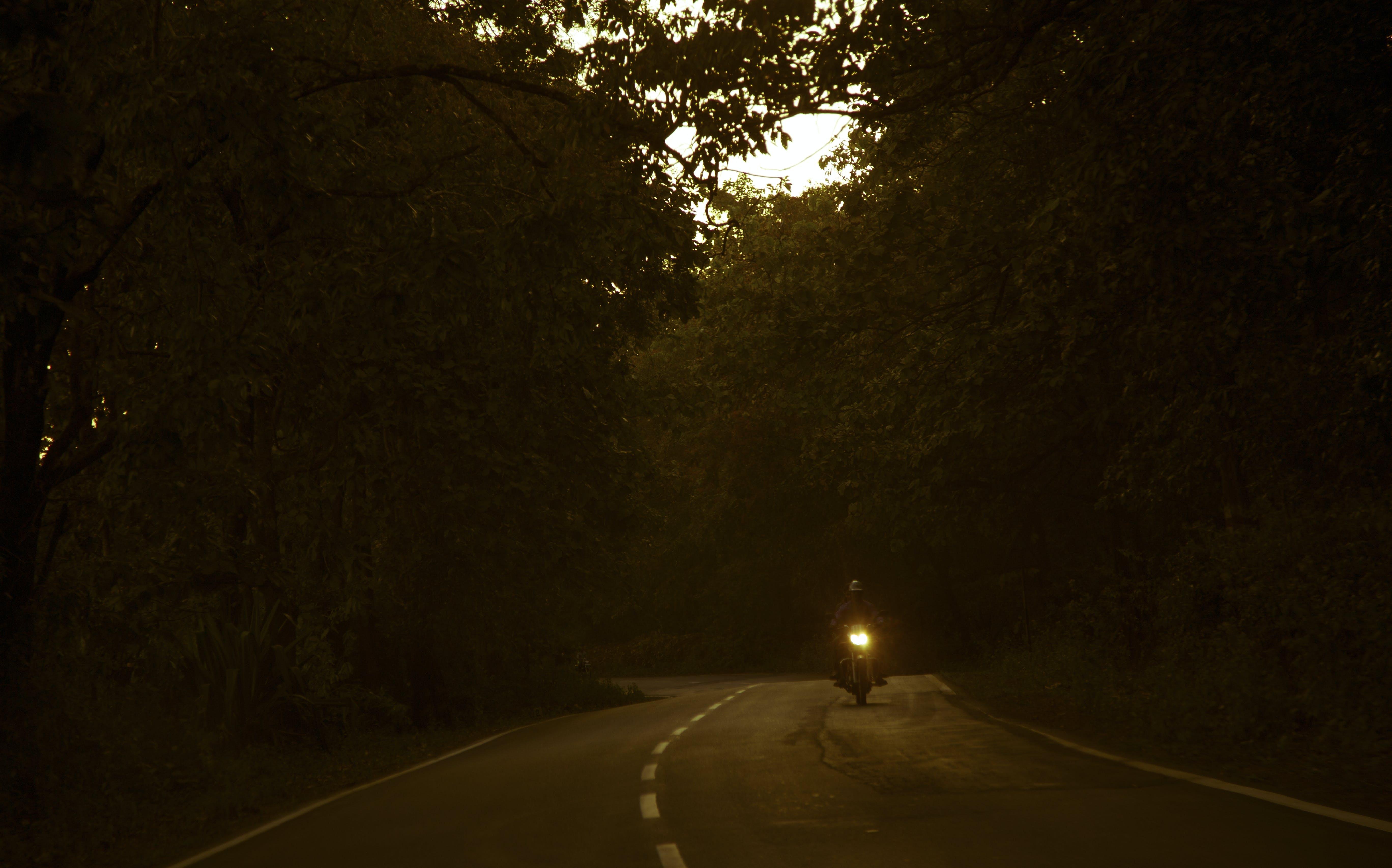 Gratis lagerfoto af aften, bagbelyst, himmel, køretur