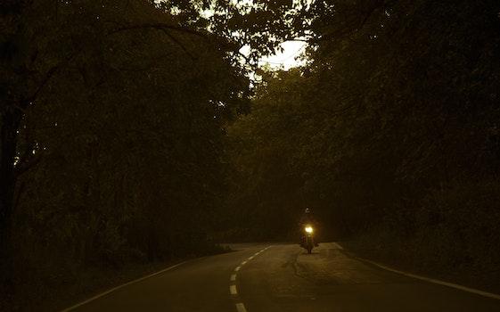 Kostenloses Stock Foto zu licht, straße, landschaft, natur