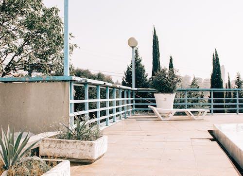 Безкоштовне стокове фото на тему «архітектура, внутрішній дворик, Денне світло, дерева»