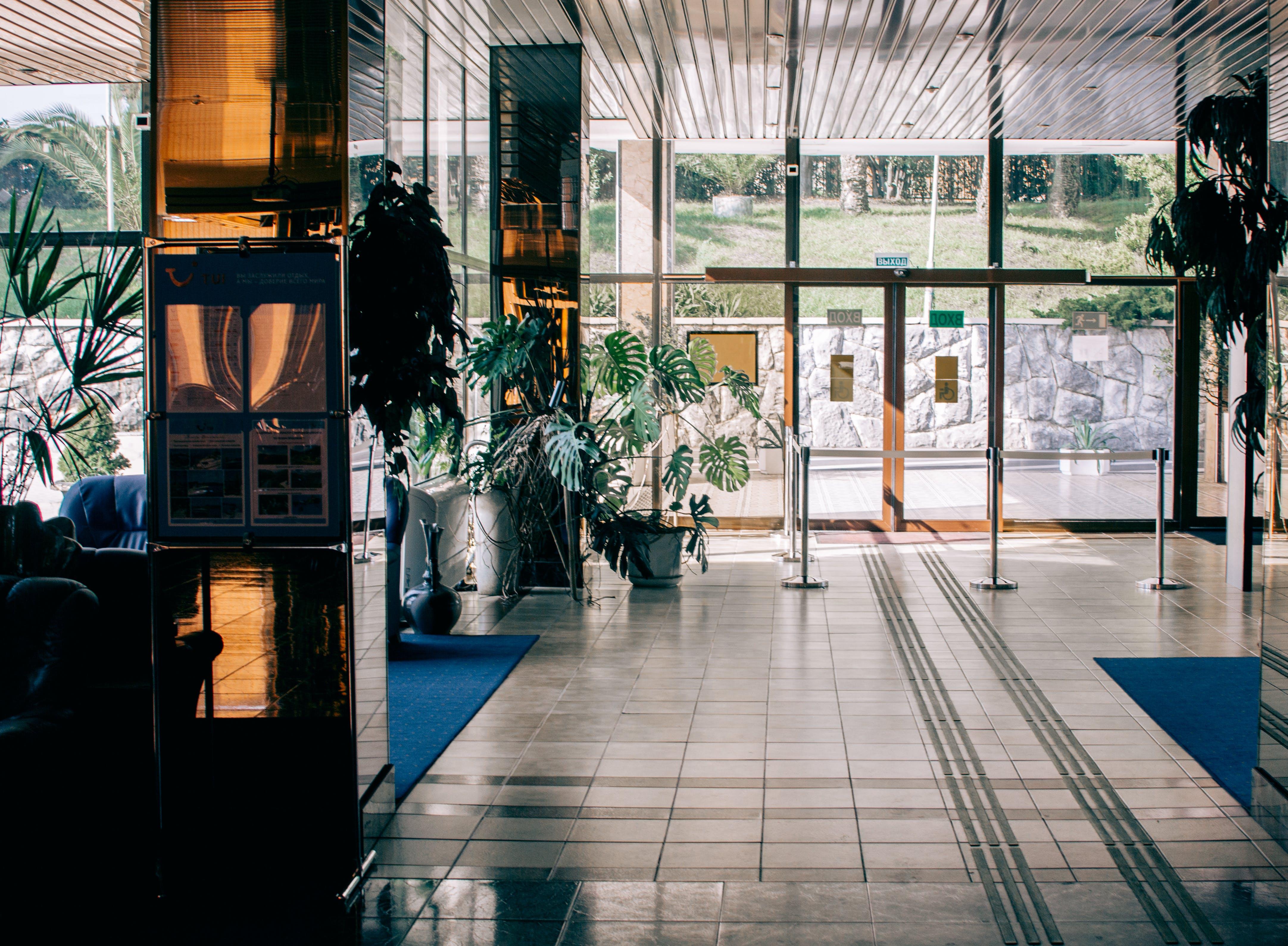 Photo of Plants Near the Glass Door
