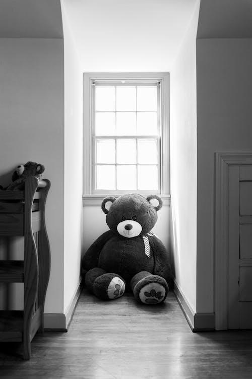 Bear Plush Toy on Chair