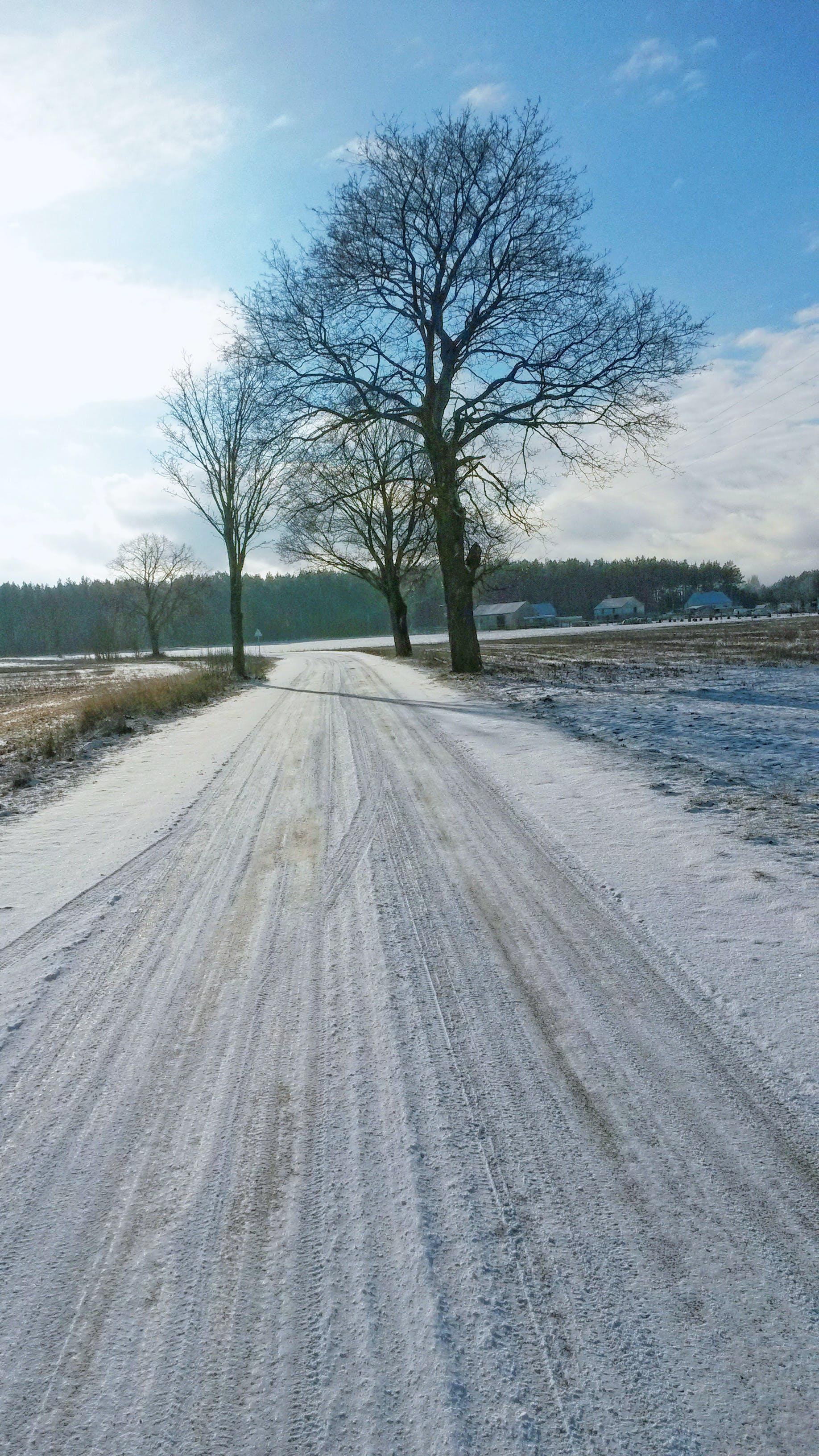 Free stock photo of snow, road, sun, winter