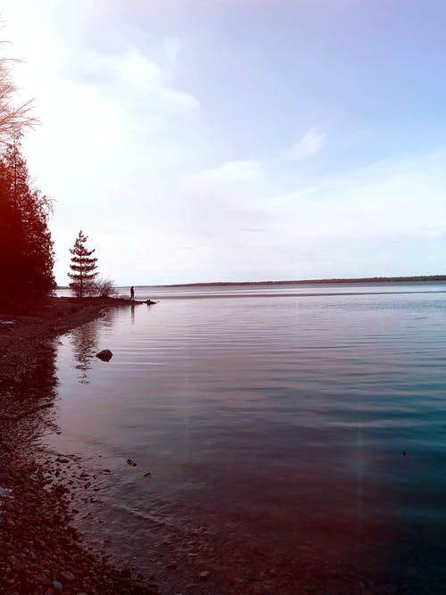 Free stock photo of gillies grove, ottawa river