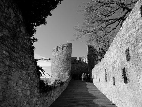Fotos de stock gratuitas de antiguo, arboles, arquitectura, castillo