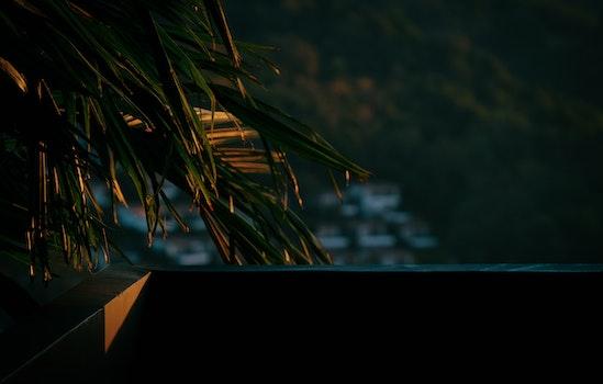 Kostenloses Stock Foto zu landschaft, sonnenuntergang, dunkel, farben