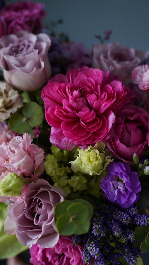 Bunch of fresh gentle assorted roses in studio