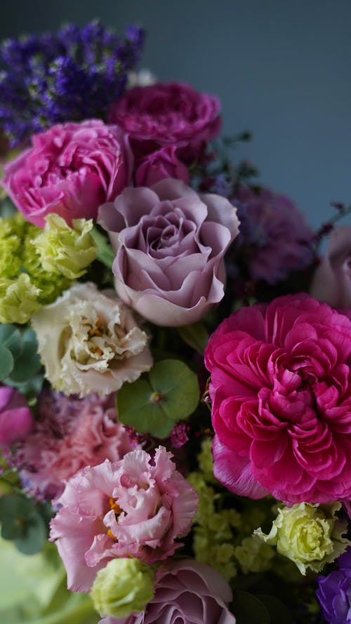 From above bunch of fresh delicate assorted roses of various colors placed against gray background