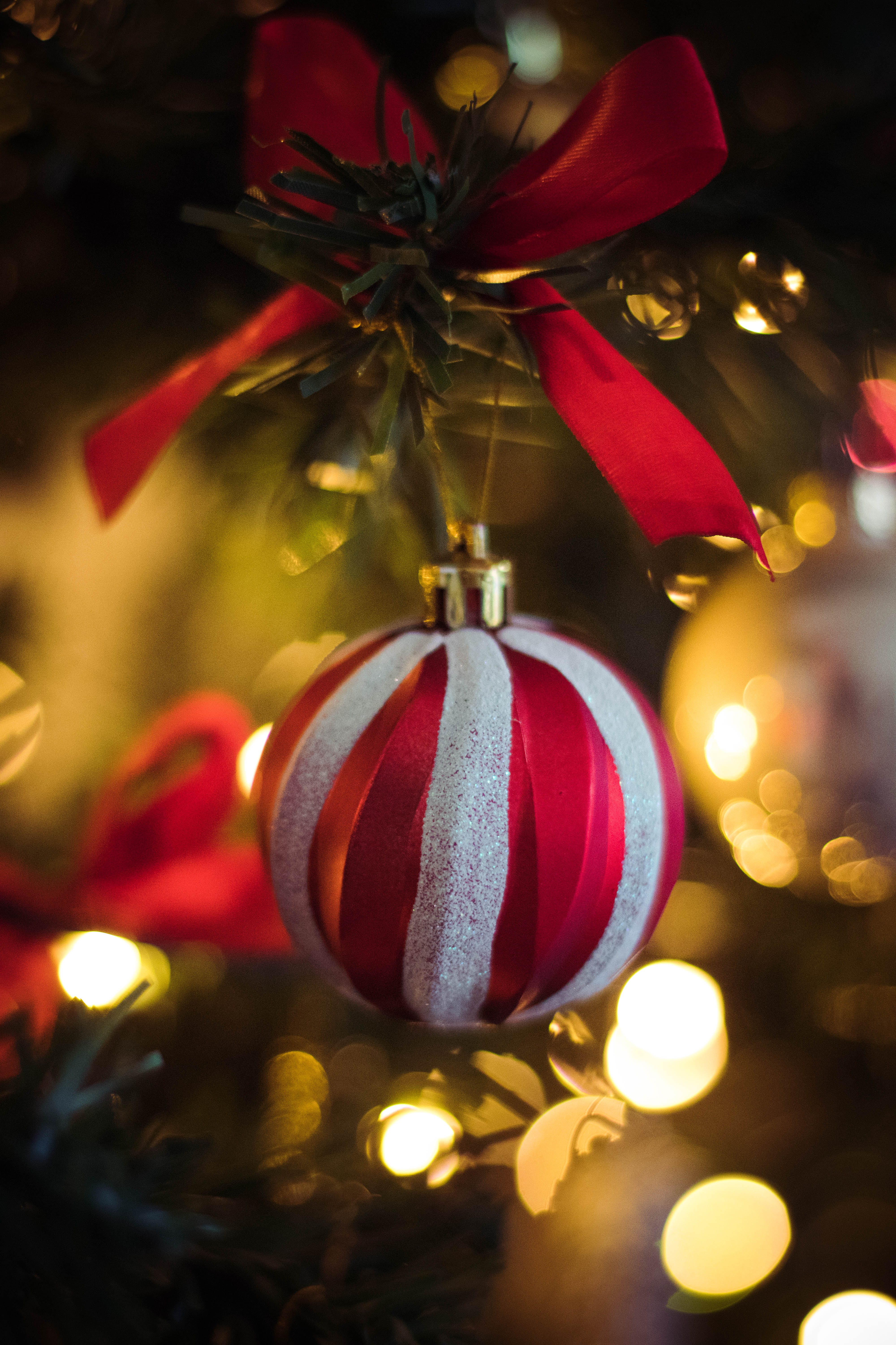 Red and White Stripe Christmas Bauble Hanging on Christmas Tree