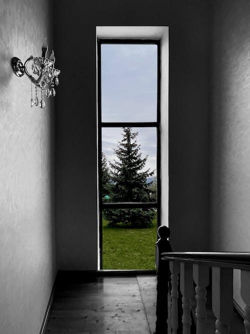 Foto d'estoc gratuïta de art, color a la finestra, solitari