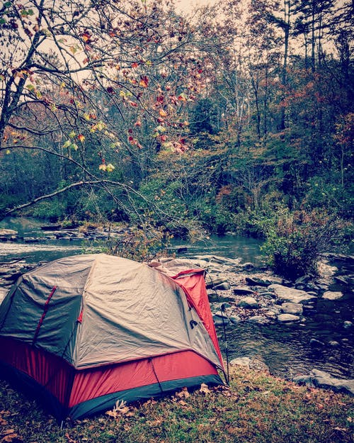 Photos gratuites de arbres, aventure, cailloux, camper