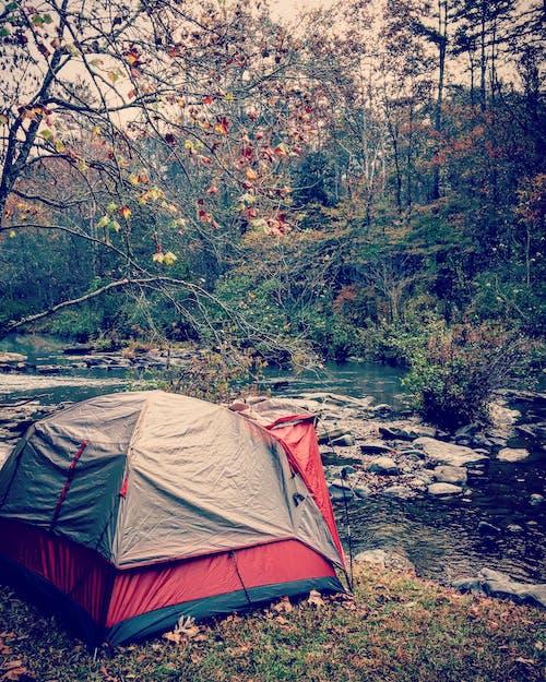 Kostenloses Stock Foto zu abenteuer, bäume, berg, campen
